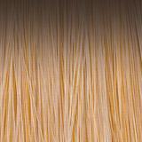 Sandal-wood-H